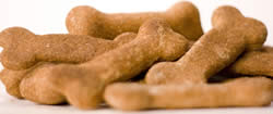Free Samples of Doggy Delightz