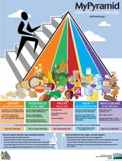 New Food Pyramid Poster & Info from USDA - I Crave Freebies