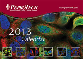 peprotech-2013-calendar