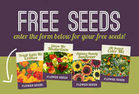 free-seeds
