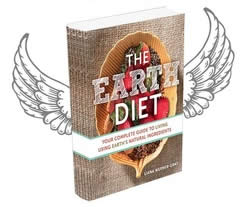 the-earth-diet-book