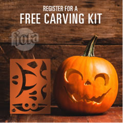 2 Inch 50mm Insert Fit Up in addition 2 Inch 50mm Roman Fit Up as well Free Fiora Spooktacular Pumpkin Carving Kit furthermore 11494051 likewise Gifts For Catalina. on clock kits walmart