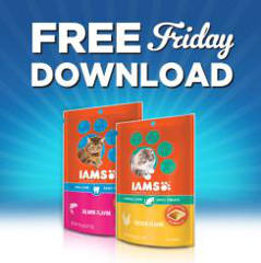 iams-cat-treats