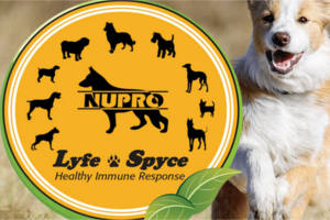 nupro-natual-pet-supplements