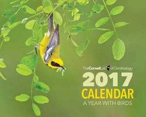 2017-the-conrnell-lab-calendar