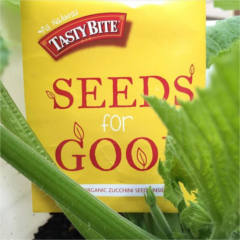 Seeds for Good