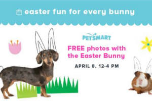 FREE Photos with the Easter Bunny at PetSmart