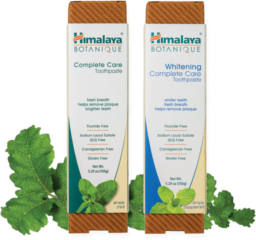 Himalaya Botanique Complete Care Toothpaste