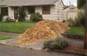 FREE Wood Chips for Your Yard