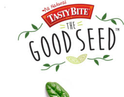 FREE Pack of Spinach Seeds