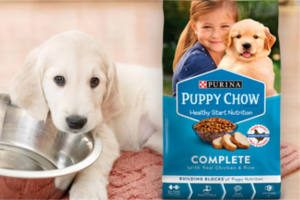 FREE Purina Puppy Chow Sample