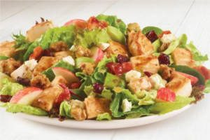 FREE Harvest Chicken Salad with ANY Purchase at Wendys