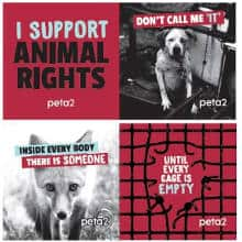 FREE PETA Like You, Only Different Stickers