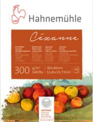 FREE Hahnemühle Cézanne and Harmony Watercolor Paper Sample