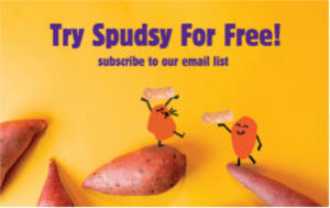 FREE Spudsy Sweet Potato Puffs Snacks Sample