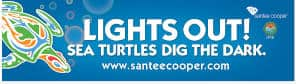 FREE Lights Out Sea Turtles Dig the Dark Bumper Sticker