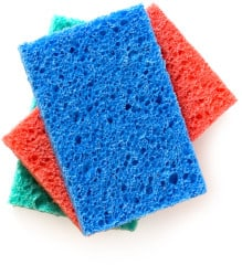 FREE Start with a Sponge Kit