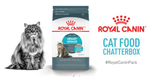 Royal Canin Cat Food Chat Pack