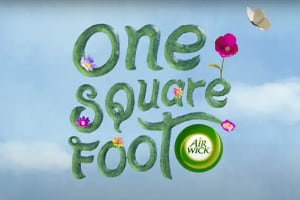 One Square Food